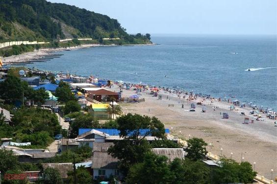 Пляж в районе Дагомыс.